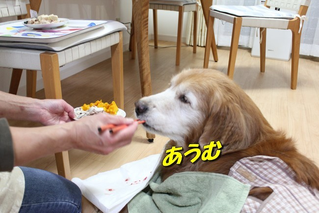 ケイチーご飯 10