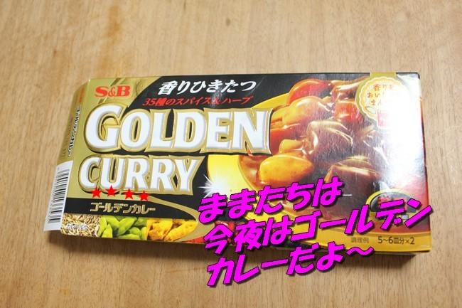 ケイチーご飯 12