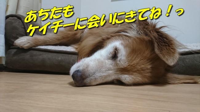 おやすみ8