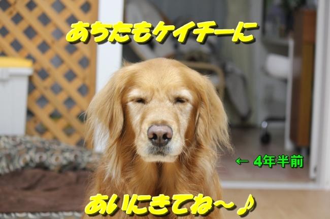 papaブログ 022