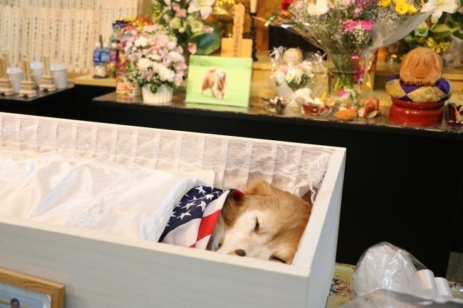 葬儀 085