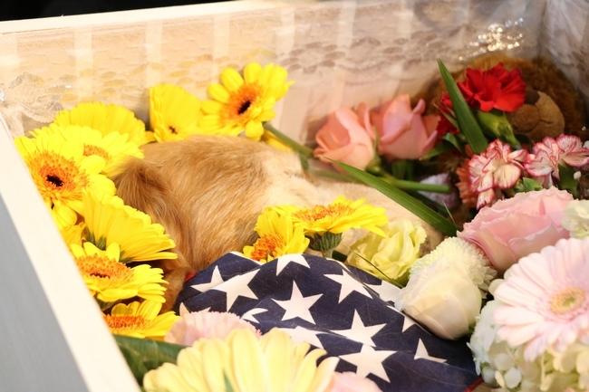 葬儀 099