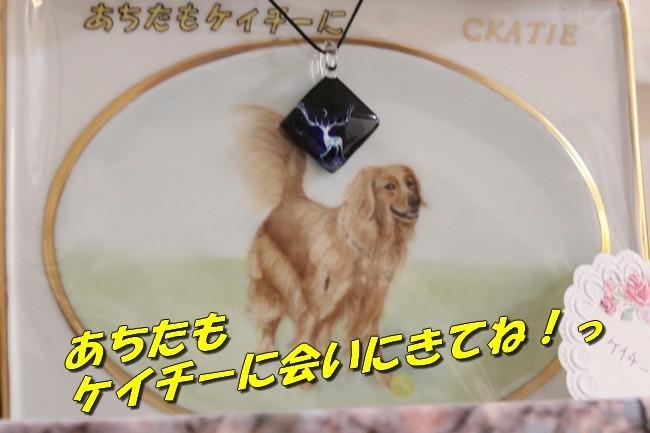 のど自慢ブログ写真 009