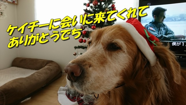 クリスマスケイチーlast