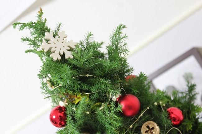 2019クリスマス 002
