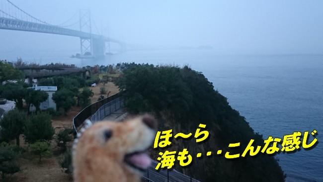 与島景色3