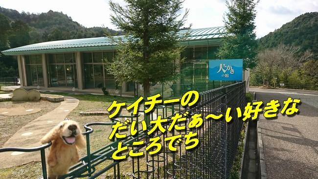犬かきの館1