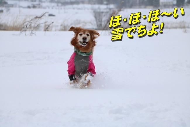 雪あそび1