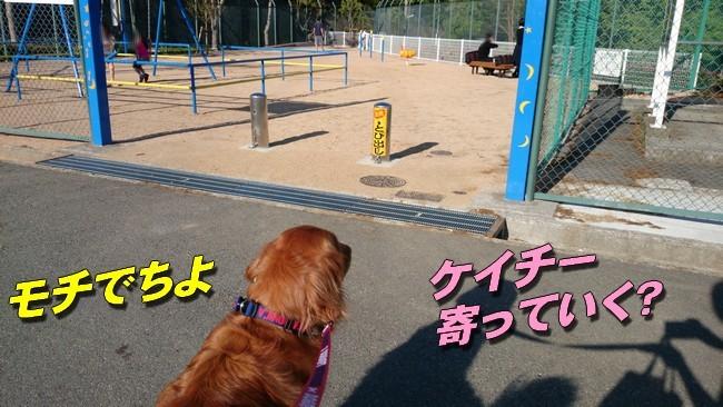 公園入口1