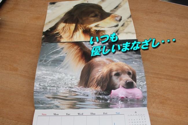カレンダー話 ファースト