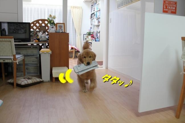 PC覗き見と新聞配達 042