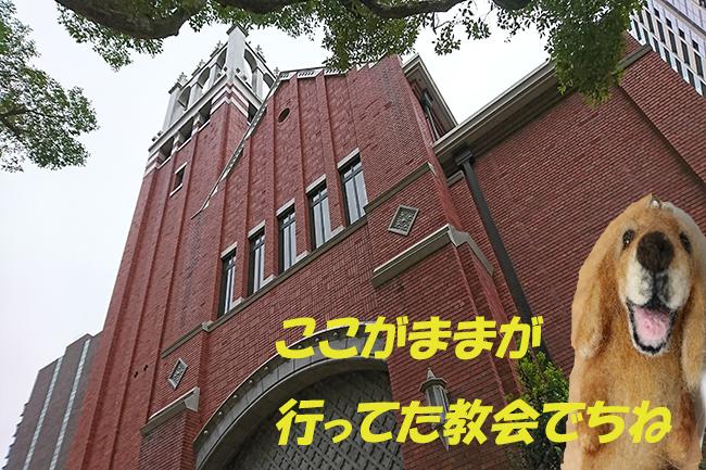 DSC_0854.jpg