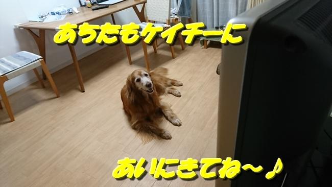 DSC_1001.jpg