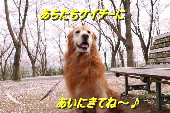 IMG_5312.jpg