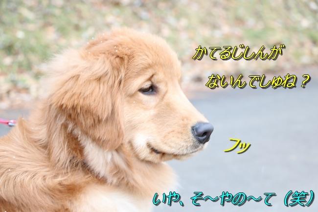 IMG_6673.jpg