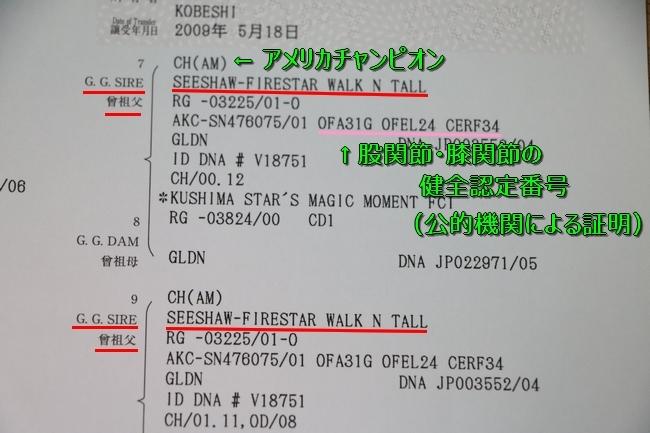 IMG_69961.jpg
