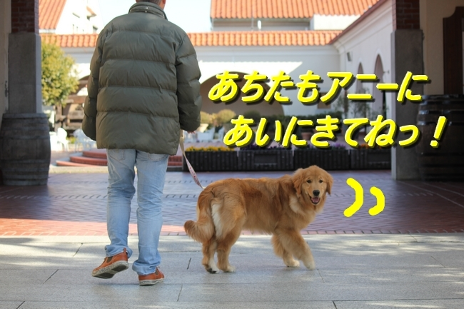 IMG_7107.jpg