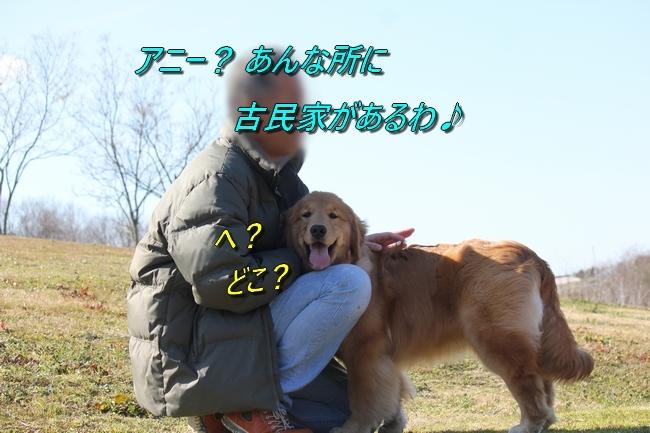 IMG_7245.jpg
