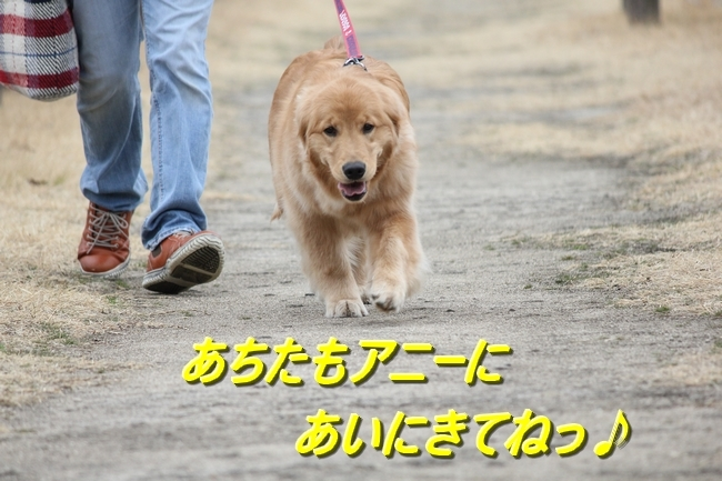IMG_7996.jpg