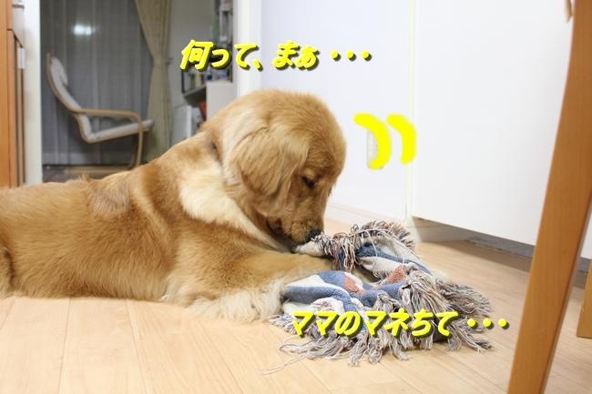 IMG_8832.jpg