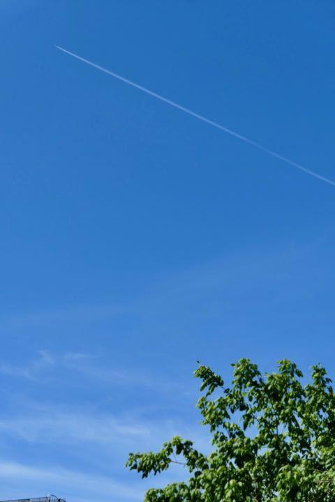 シドニーの空 - 1
