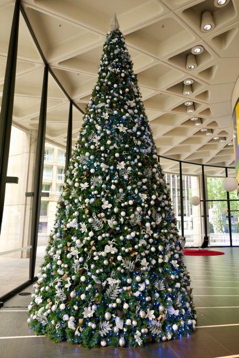 シティ クリスマスツリー - 1