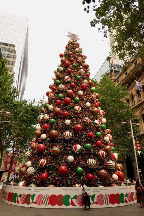 シティ クリスマスツリー - 1 (1)