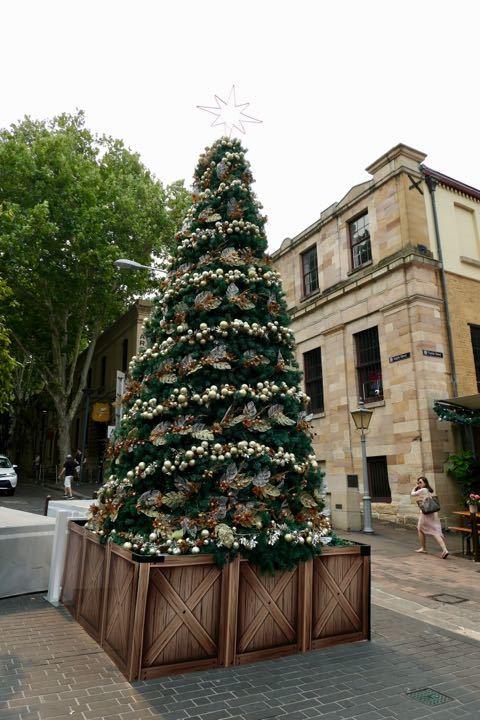 ロックス クリスマスツリー - 1