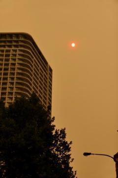 シドニー 太陽 - 1 (2)