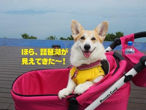 19琵琶湖や