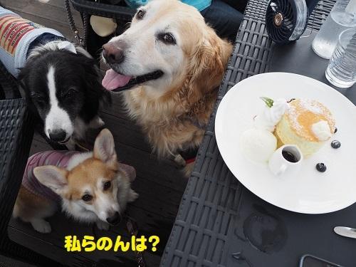 57パンケーキ