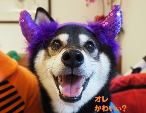 15ふたちゃん紫耳