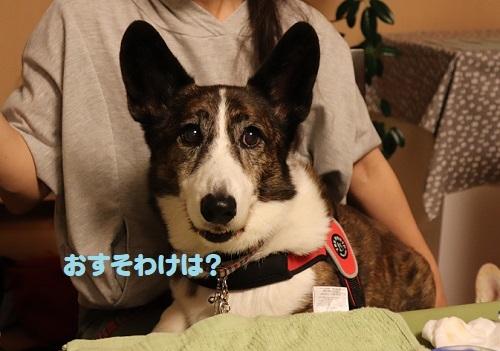 11凪ちゃん