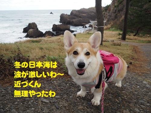 51冬の日本海は