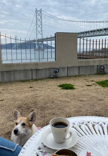 2橋みながらカフェ