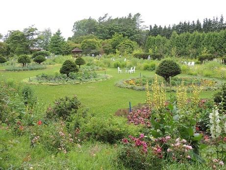 20190726紫竹ガーデン