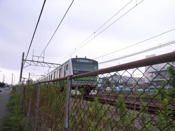 R1027019.jpg