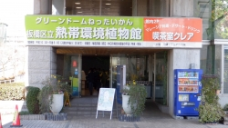 板橋区立熱帯環境植物館(グリーンドームねったいかん)