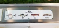 多摩川ふれあい水族館