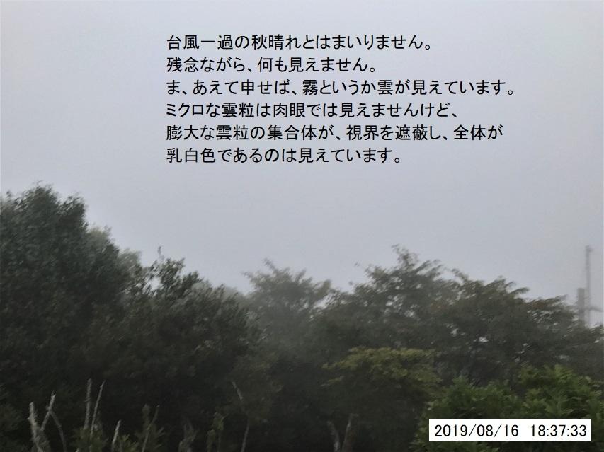 諭鶴羽駆け足登山 回峰行 11回目