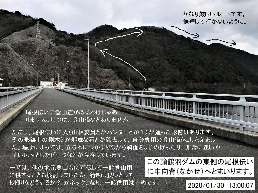 島山トレラン大周回コース