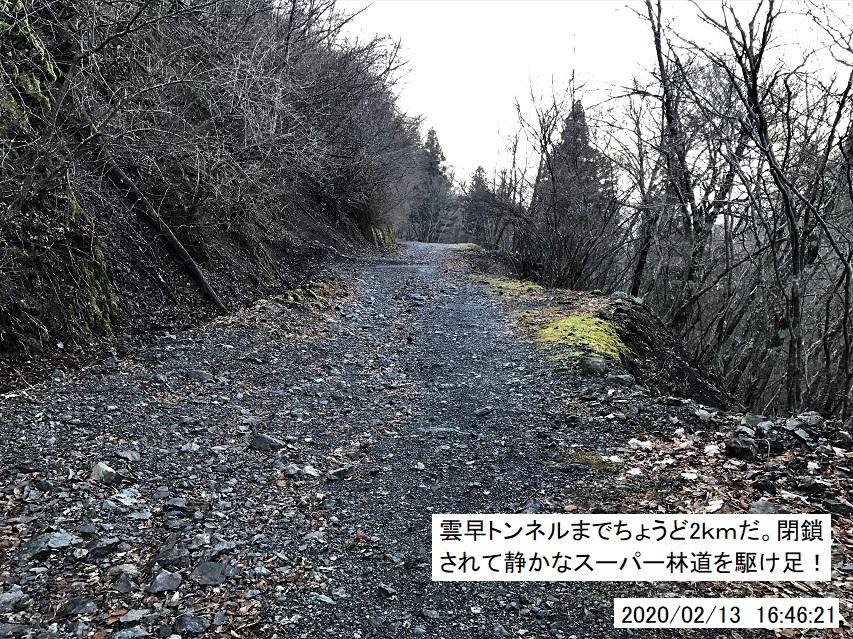 今冬は西日本は暖かく、厳寒期なのに四国の山は春山みたい!