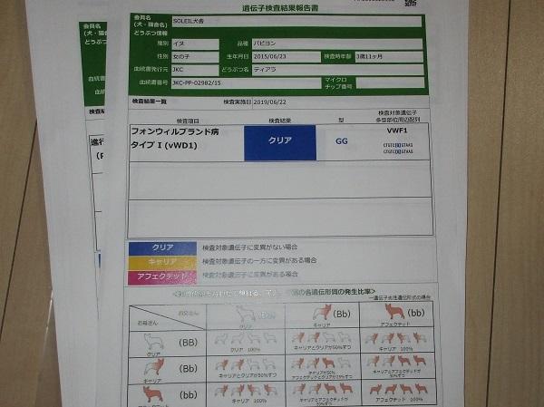 IMG_0243 (2)