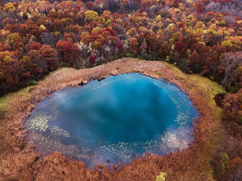 fall-3-780.jpg