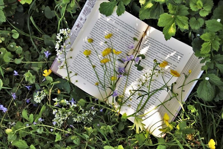 flower-book2-780.jpg