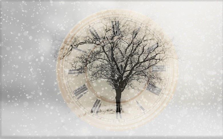 snow-tree-780.jpg