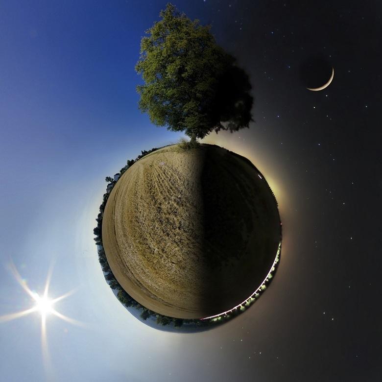 sun-moon-tree-780.jpg