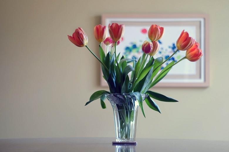 tulip-vase-780.jpg