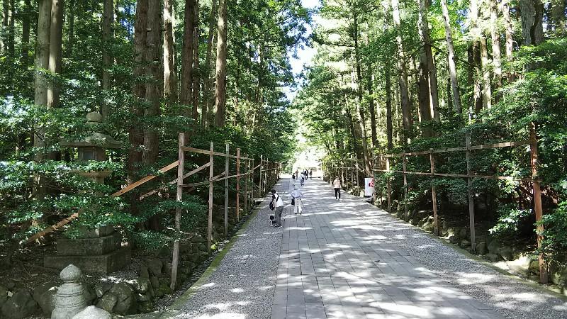 彌彦神社参道201907