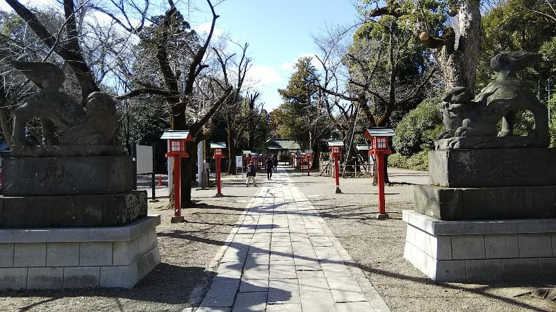 4鷲宮神社狛犬